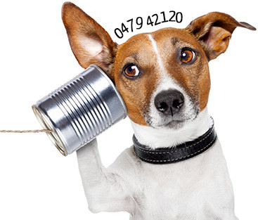 Ny telefonoperatör